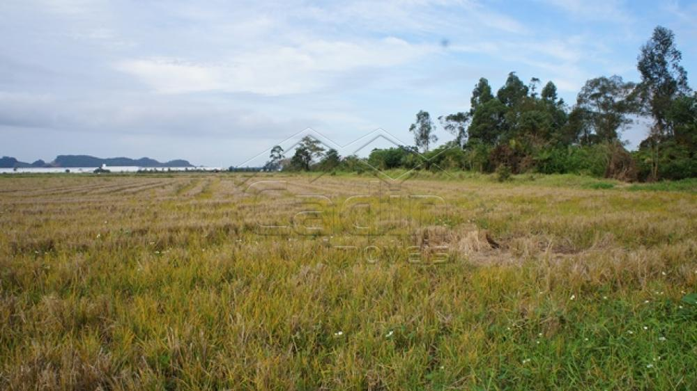 Comprar Terreno / Área em Navegantes R$ 8.500.000,00 - Foto 6