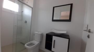 Alugar Apartamento / Padrão em Navegantes R$ 3.500,00 - Foto 41