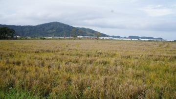 Comprar Terreno / Área em Navegantes R$ 8.500.000,00 - Foto 4