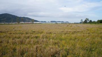 Comprar Terreno / Área em Navegantes R$ 8.500.000,00 - Foto 5