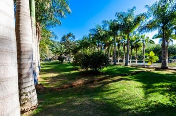 Navegantes Escalvados Rural Venda R$2.000.000,00 3 Dormitorios  Area do terreno 31374.50m2